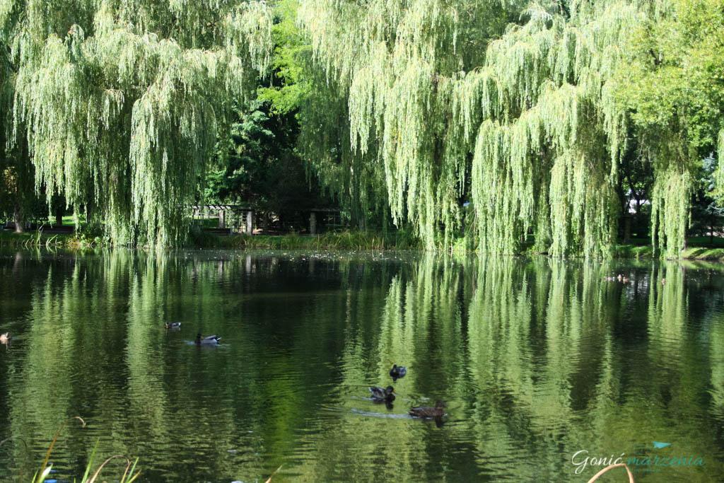 Park Oruński